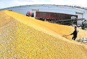 山西省新绛县发改局就粮食大清查普查阶段工作准备情况进行检查