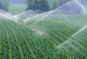 四部委推进农业水价综合改革:今年新增改革实施面积1.2亿亩以上