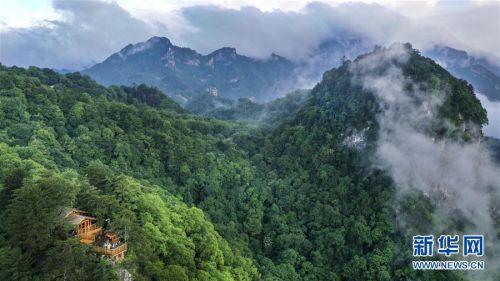 (美丽中国)(3)陕西略阳雨后初霁 森林公园美若仙境
