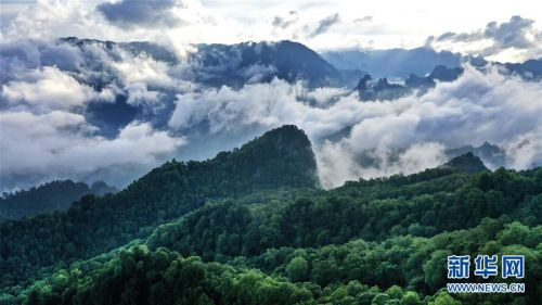 (美丽中国)(4)陕西略阳雨后初霁 森林公园美若仙境