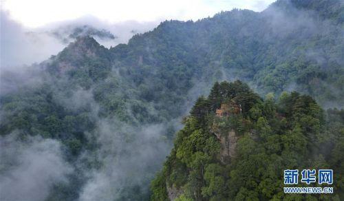 (美丽中国)(9)陕西略阳雨后初霁 森林公园美若仙境