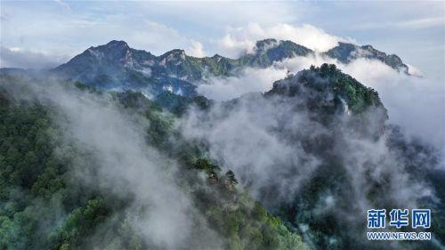 (美丽中国)(5)陕西略阳雨后初霁 森林公园美若仙境