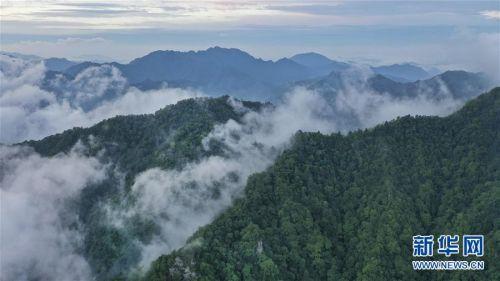 (美丽中国)(2)陕西略阳雨后初霁 森林公园美若仙境