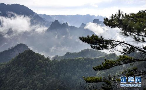 (美丽中国)(7)陕西略阳雨后初霁 森林公园美若仙境