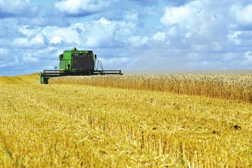 近年來,綏化市不斷加快農業轉型升級,助力農民增收致富。綏化市委宣傳部/供圖