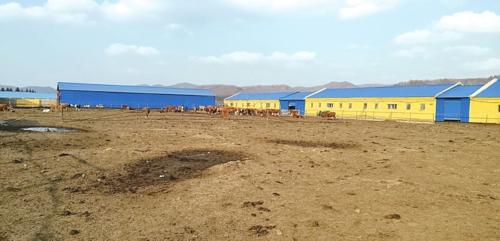 延边犇得牛业有限公司养殖区