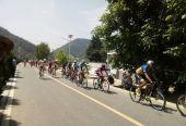 """""""一带一路""""陕西·商洛2019环秦岭国际公路自行车赛举行"""