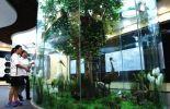 黑龙江宝清七星河湿地宣教馆即将免费对外开放