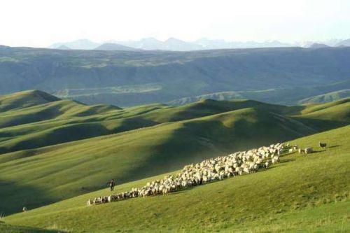 我和草原有个约定 踏上锡林郭勒大草原