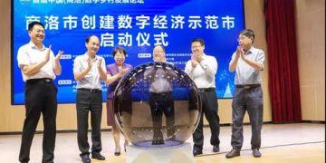 首届中国(商洛)数字乡村发展论坛举行