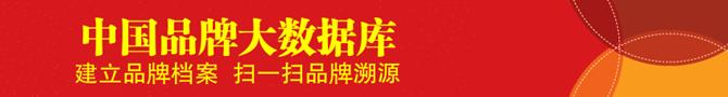 中国发展网《品牌档案》