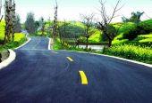 2025年農村交通條件和出行環境得到根本改善