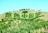 """從全球荒漠化治理看庫布其模式的""""中國經驗""""------從沙漠變綠洲的神奇之地"""