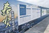 奉贤区计划在7个镇、1个街道推进农民相对集中居住
