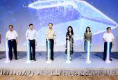 2019世界老式汽车长三角公开赛9月将在奉贤举办