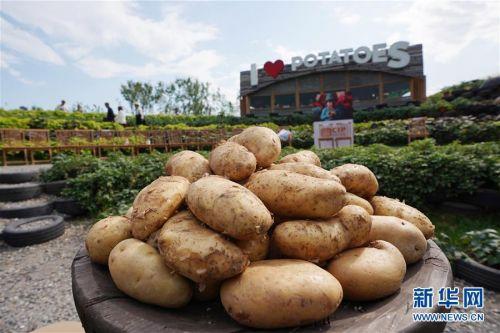 """(北京世园会)(6)北京世园会迎来""""国际马铃薯中心与秘鲁联合荣誉日"""""""