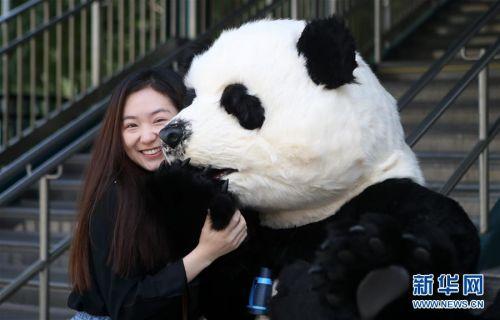 (国际)(3)中国花灯将登陆纽约花旗球场 点亮纽约新年