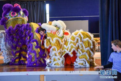 """(国际)(2)新西兰一中学举办""""发现中国日""""活动"""