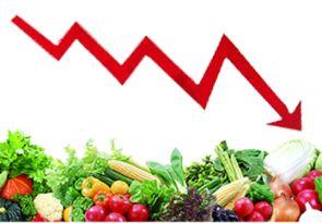 中秋节后 山东阳谷蔬菜价格回落