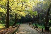 全国新增3条国家森林步道全程3466公里 途经33处国家森林公园