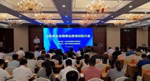 图为山东省改委财金处处长林平发表讲话