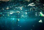 環保組織吁海洋垃圾所涉企業減塑 專家:須強制執行