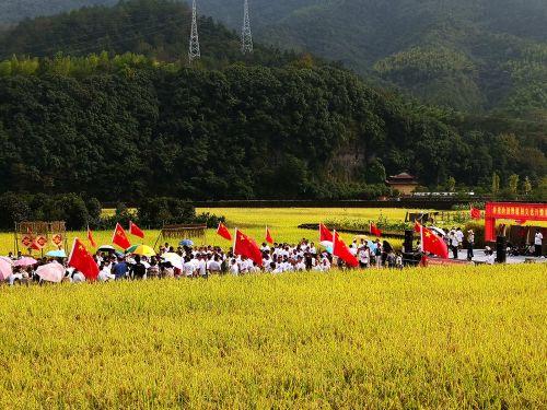 """农事体验、农特产品展销、方前小吃品尝等多种活动,吸引大批游客前来感受""""希望的田野""""。"""