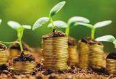 我国绿债市场的广度和深度 可充分满足国内外投资需求