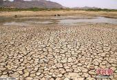 報告:2050年,全球50億人或面臨糧食和水短缺