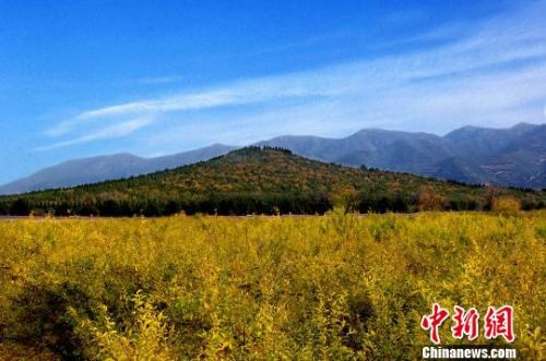 秦始皇陵控制地帶要建酒店引熱議官方:不在保護區