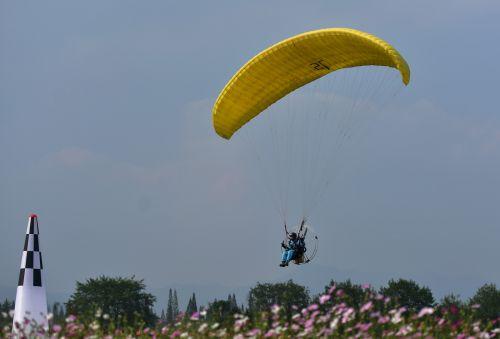 伞花绽放在武义希望的田野上方