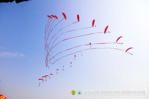 开幕式现场别具特色的滑翔机表演(武义县委宣传部供图)
