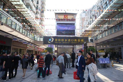 青田侨乡进口商品城引来各界嘉宾和市民。沈继平 摄
