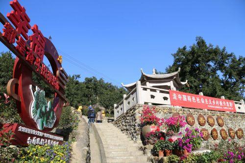 """""""千年香榧林,万年巨石阵"""",不仅仅富了一方乡民,更成为远近闻名的旅游景点。沈贞海 摄"""