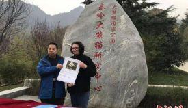 """全球唯一圈養棕色大熊貓""""七仔""""被認養"""