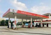 成立合资公司 两桶油抱团抢食海南