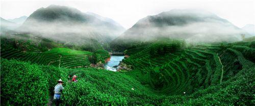 千年古县开化,文化底蕴深厚、处处绿水青山,是天然的大花园。