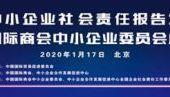 中国国际商会中小企业委员会成立
