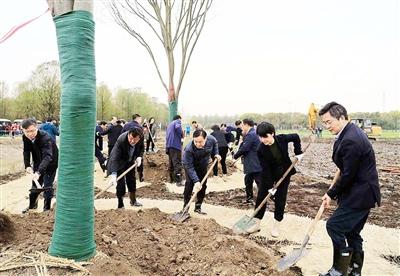 上海奉贤:构建生态优势 赋能乡村振兴