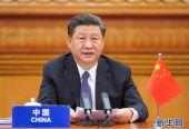习近平在二十国集团领导人特别峰会上的重要讲话(全文)