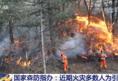 国家森防指办:一周森林火灾56起因灾死亡5人 火灾多数人为引发