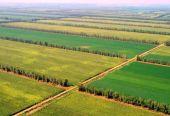 江西:有效加强农业基础设施建设
