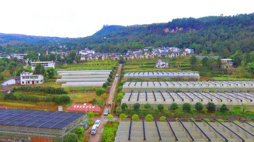 产业振兴促发展,沙河农村换新颜
