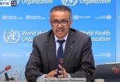 """世卫:全球一半新增病例来自两个国家 美洲区域仍是疫情""""震中"""""""
