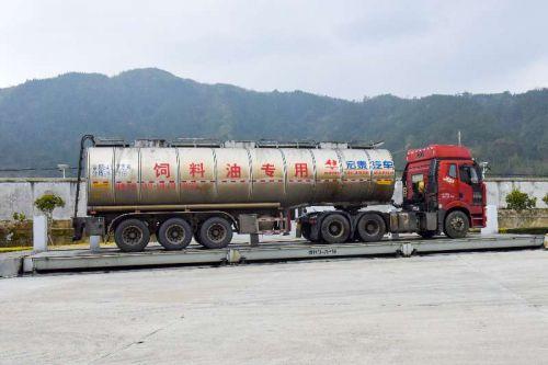 满载豆油的车辆驶入圣农饲料6厂