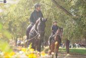 北京开通首条城市马道 可骑马乘车观光