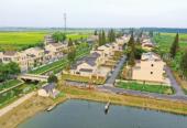 """湖北仙桃:推进""""三美""""建设 完成项目290个 投入资金6亿元"""