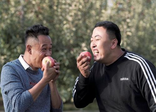 新疆两青年合伙卖水果,入驻拼多多半年销售额破1700万元
