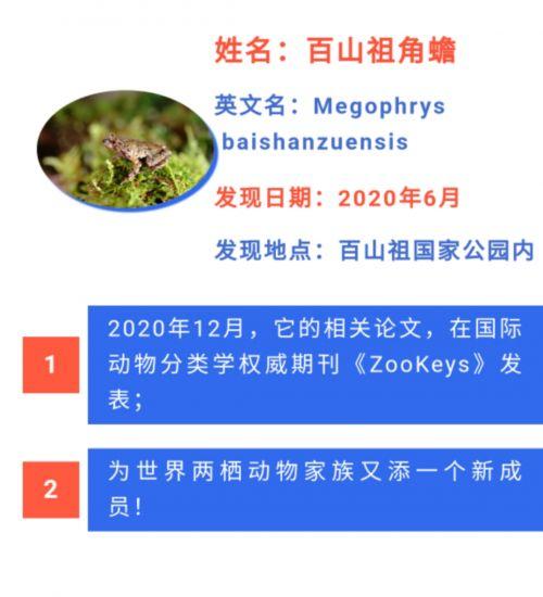 微信图片_202101191315271