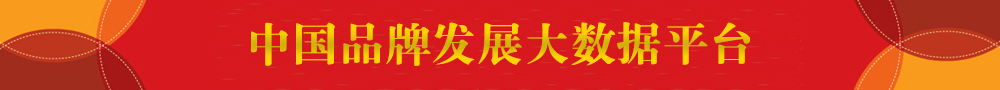 中国品牌发展大数据平台